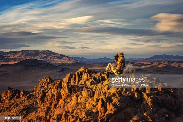 mongolian eagle hunters - mongólia imagens e fotografias de stock