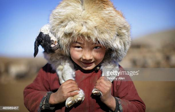 Mongolian nomadic boy carries lamb on shoulders