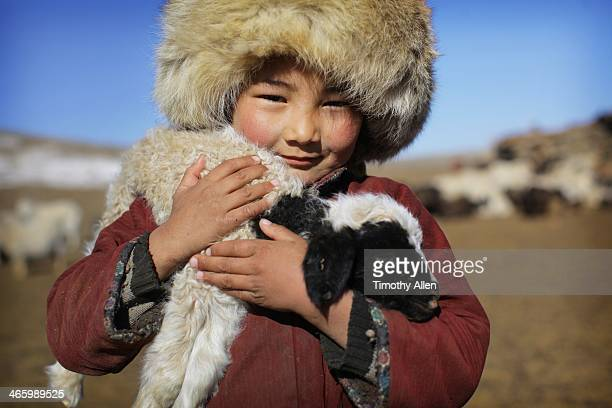 mongolian nomadic boy carries lamb - モンゴル ストックフォトと画像
