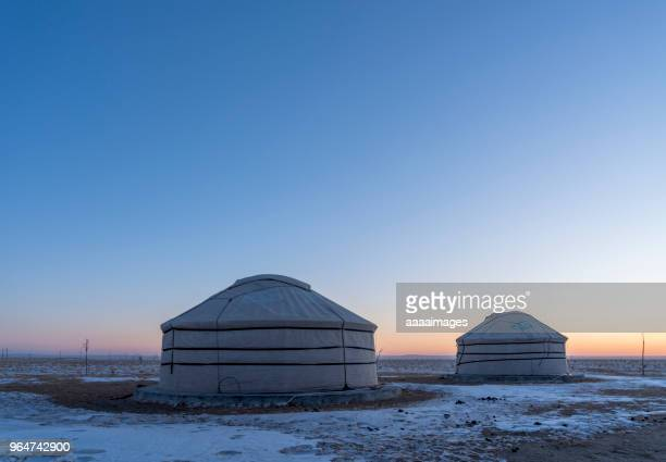 mongolian nomadic gers on a moonlit evening - モンゴル ストックフォトと画像