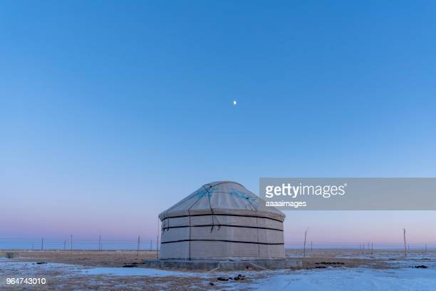mongolian nomadic gers on a moonlit evening - yurt stock pictures, royalty-free photos & images