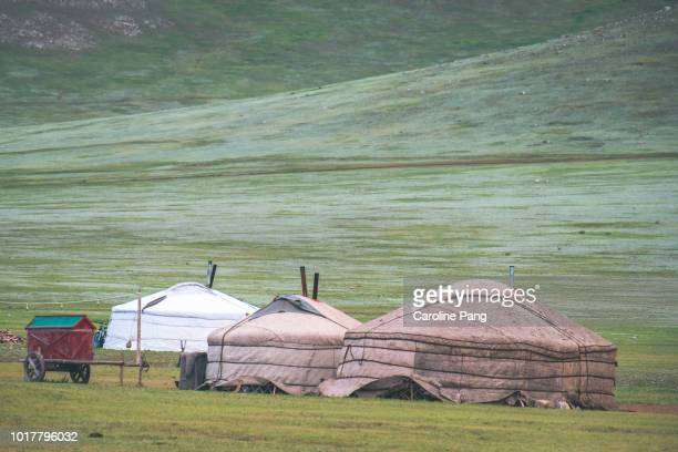 Mongolian nomads live in tent known as ger. It is portable and each ger accommodates a family of four to six persons. During winter, the ger is properly insulated with cotton and layers of dried animal skins. There is a chimney in the middle of the ger.