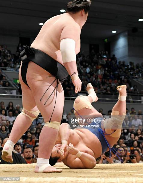 Mongolian ozeki Terunofuji pats sekiwake Kotoshogiku to win during day fourteen of the Grand Sumo Spring Tournament at Edion Arena Osaka on March 25...