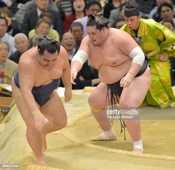 Mongolian ozeki Terunofuji pushes Mongolian yokozuna Kakuryu to win during day thirteen of the Grand Sumo Spring Tournament at Edion Arena Osaka on...