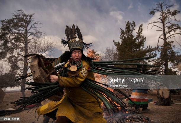 Mongolian Shaman or Buu takes part in a fire ritual meant to summon spirits at the Mother Tree on April 05 2018 in Sukhbaatar Selenge Province...