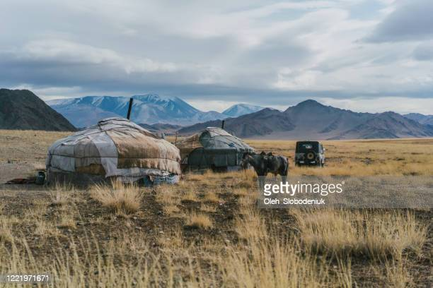 mongolian tribe village in steppe in mongolia - independent mongolia stock pictures, royalty-free photos & images