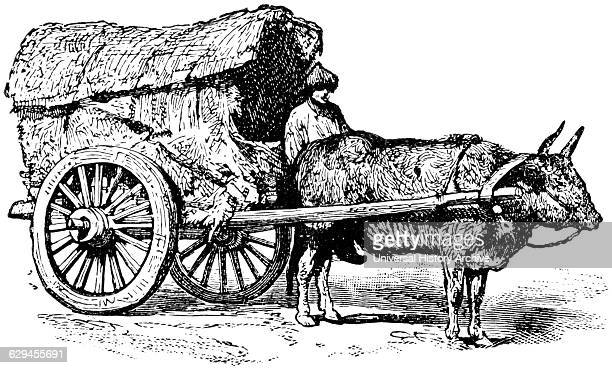 Mongolian Wagon China 'Classical Portfolio of Primitive Carriers' by Marshall M Kirman World Railway Publ Co Illustration 1895