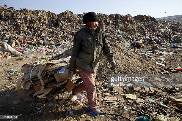 Mongolian woman drags garbage to a truck working collecting and recycling at a dump March 5 2010 in Ulaan Baatar Mongolia Working at the garbage dump...