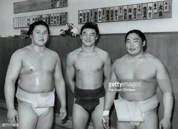 Mongolian wrestlers Kyokutenho Kyokutenzan and Kyokushuzan are seen at Oshima Stable on May 4 1996 in Tokyo Japan
