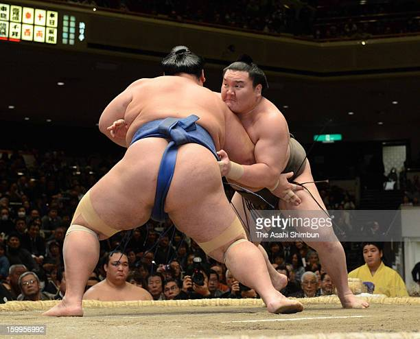 Mongolian yokozuna Hakuho whose real name is Monkhbatyn Davaajargal and ozeki Kotoshogiku compete in day eleven of the Grand Sumo New Year Tournament...