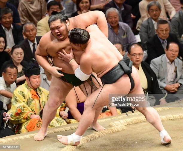 Mongolian yokozuna Harumafuji pushes Chiyotairyu out of the ring to win during day six of the Grand Sumo Autumn Tournament at Ryogoku Kokugikan on...