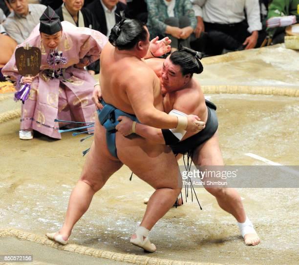 Mongolian yokozuna Harumafuji pushes Mongolian komusubi Tamawashi out of the ring to win during day twelve of the Grand Sumo Autumn Tournament at...