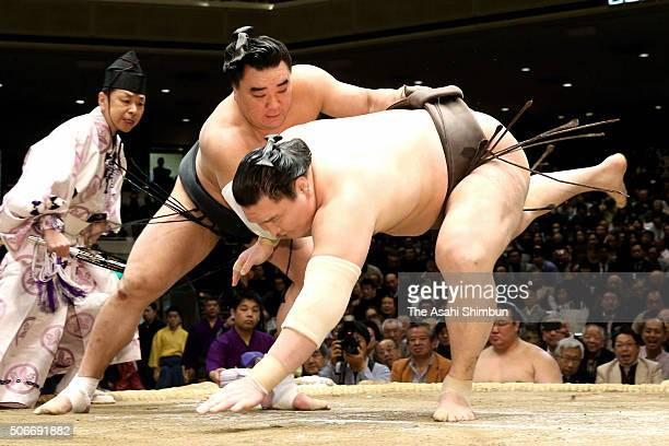 Mongolian yokozuna Harumafuji throws Mongolian yokozuna Hakuho during day fifteen of the Grand Sumo New Year Tournament at Ryogoku Kokugikan on...