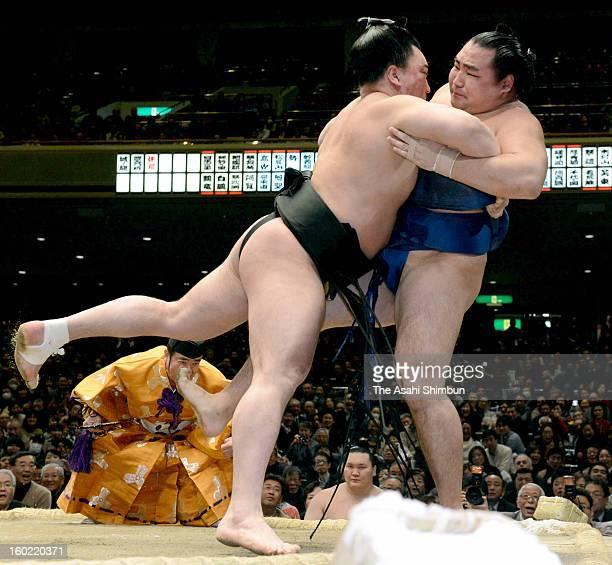 Mongolian yokozuna Harumafuji whose real name is Davaanyamyn Byambadorj pushes out fellow ozeki wrestler Kakuryu whose real name is Mangaljalavyn...
