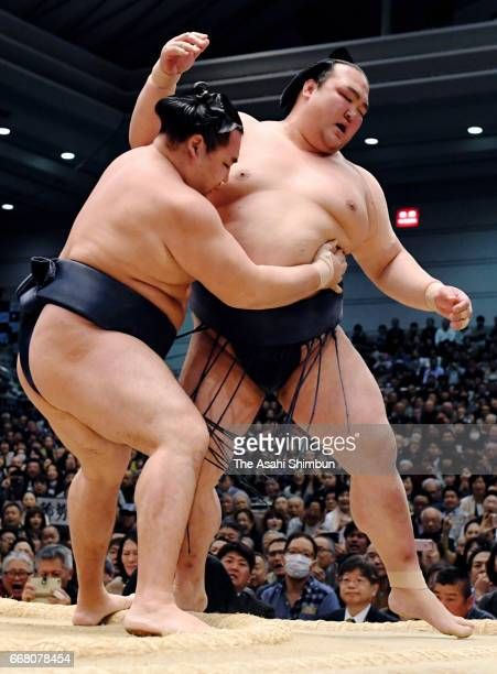 Mongolian yokozuna Kakuryu pushes yokozuna Kisenosato out of the ring to win during day fourteen of the Grand Sumo Spring Tournament at Edion Arena...