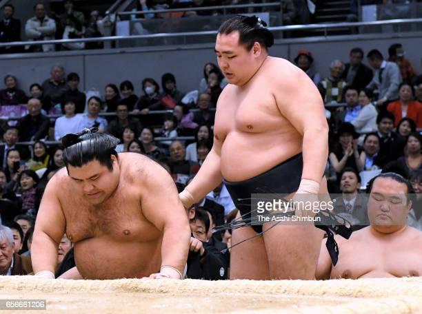 Mongolian yokozuna Kakuryu reacts after beating sekiwake Takayasu during day eleven of the Grand Sumo Spring Tournament at Edion Arena Osaka on March...