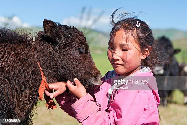 mongolian young girl playing with yak - mongolian women stock photos and pictures