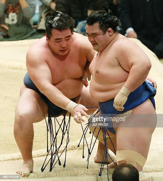 Mongolianborn ozeki or sumo champion Kakuryu pushes his opponent rival ozekiranked wrestler Kotoshogiku out of the ring to win the 15day Spring Grand...