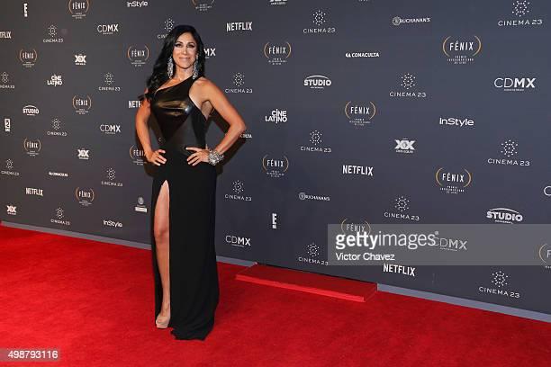 Monica Noguera attends Premio Iberoamericano de Cine Fenix 2015 at Teatro de La Ciudad on November 25 2015 in Mexico City Mexico