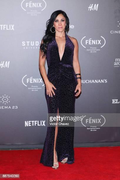 Monica Noguera attends the Premio Iberoamericano De Cine Fenix 2017 at Teatro de La Ciudad on December 6 2017 in Mexico City Mexico