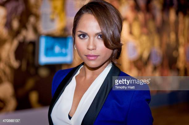 Monica Raymund appears in advance of a panel discussion at the Museum of Broadcast Communications in Chicago IL on February 19 2014