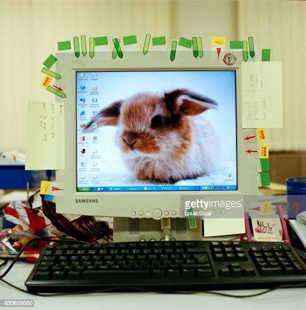 Monitor belonging to Gemma lloyd compliance officer showing personalisation of her desk space From the series 'Desk Job' a project which explores...
