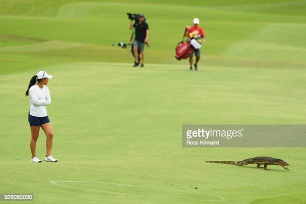 A monitor lizard walks as Danielle Kang of the United States looks on during round two of the HSBC Women's World Championship at Sentosa Golf Club on...