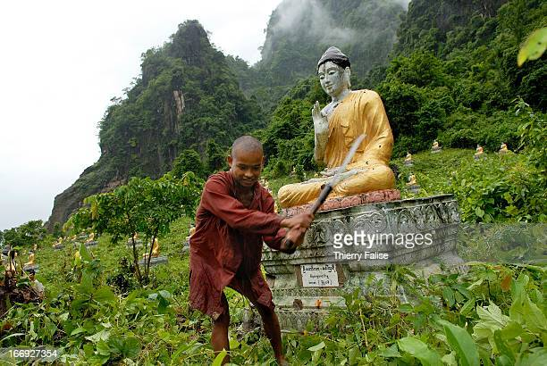 A monk cuts wild grass and vegetation growing around the 500 Buddha statues erected at the foot of a hill near the Thayet U Min pagoda