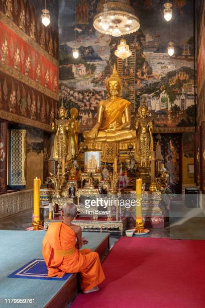 monk in front of buddha images. - tim bewer stockfoto's en -beelden