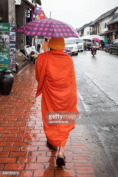Monk on a rainy day in Luang Prabang