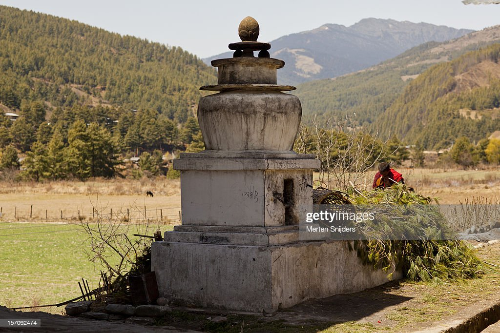 Monk preparing branches for offering : Stockfoto