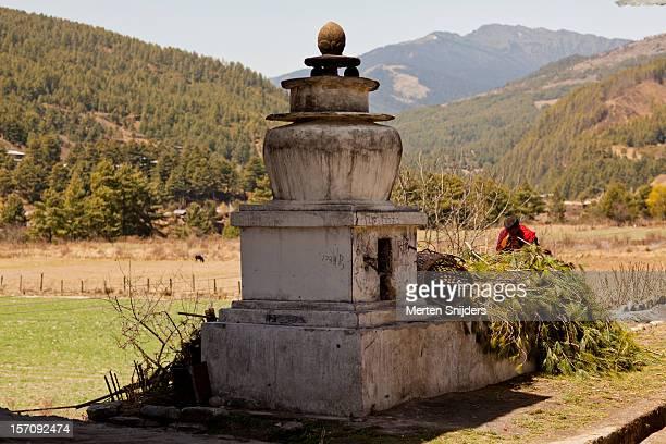 monk preparing branches for offering - merten snijders stockfoto's en -beelden