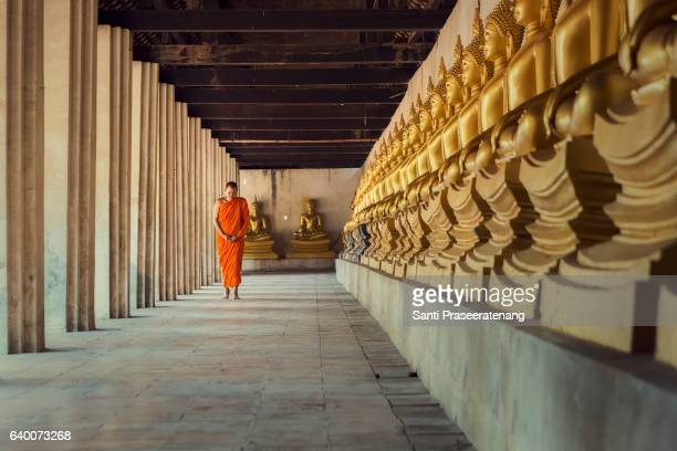 monk walking meditation - monk stock pictures, royalty-free photos & images