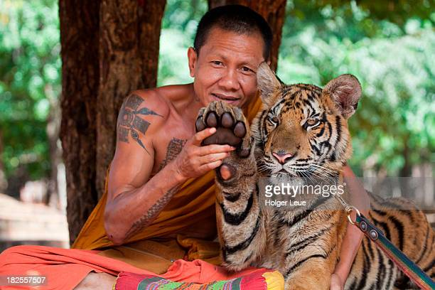Monk with tiger at Temple of the Tigers