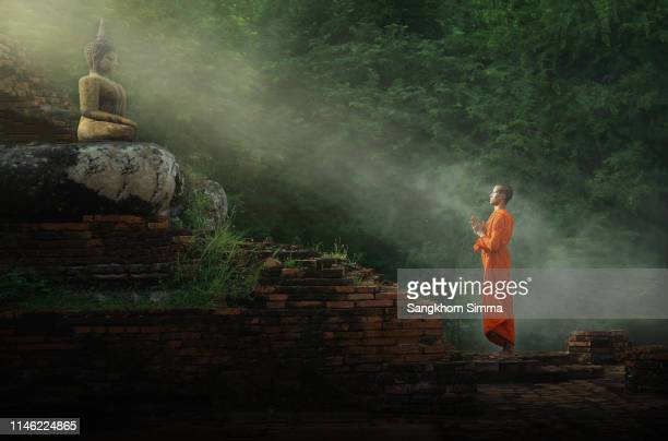 monk worship the buddha statue. - tempel stockfoto's en -beelden