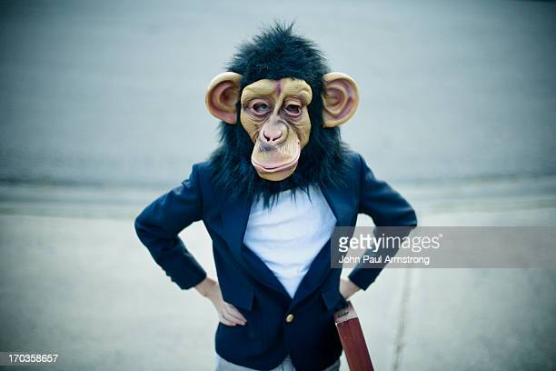 monkey business - monkey suit stock pictures, royalty-free photos & images