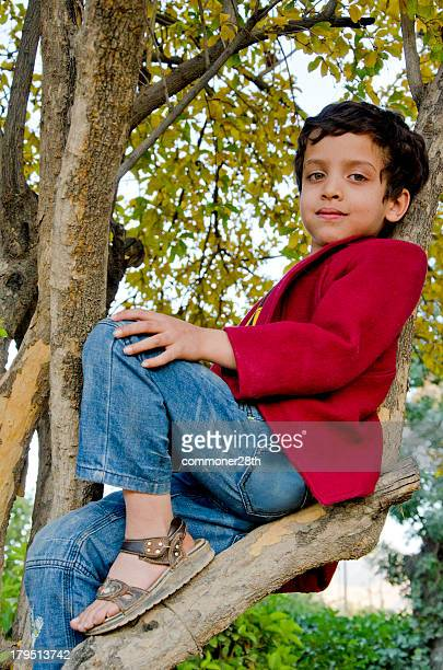 monkey business ! - cute pakistani boys stock photos and pictures