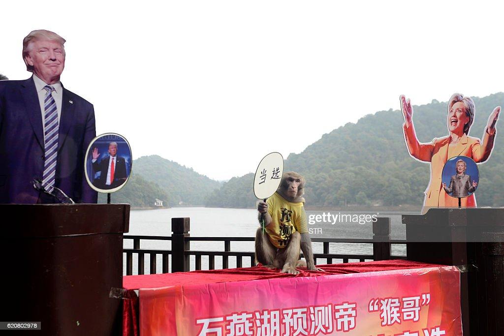 CHINA-US-VOTE-OFFBEAT : News Photo