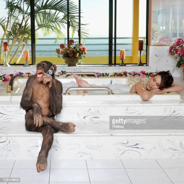 monkey talking on cell phone while woman takes a bath - monkeys stock photos and pictures