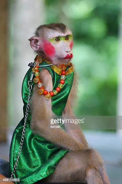 monkey-theatre-thailand-picture-id458114