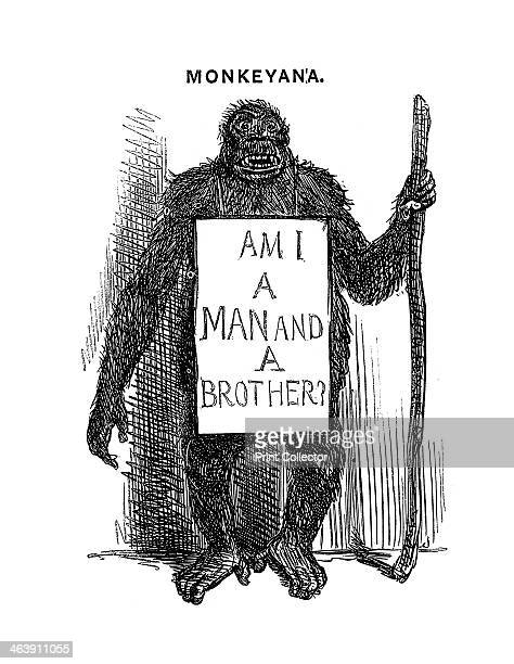 'Monkeyana Am I a Man and a Brother' 1861 Cartoon from Punch London 18 May 1861 when controversy over Darwin's Origin of Species was raging The...