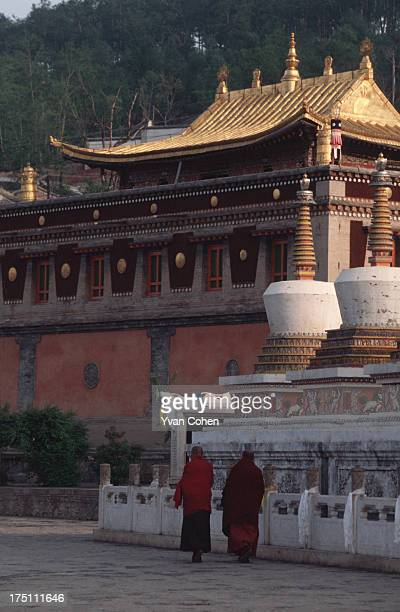 Monks dressed in traditional red robes walk towards a temple at the Kumbum monastery the birthplace of Je Tsongkhapa the founder of the Gelugpa Sect...