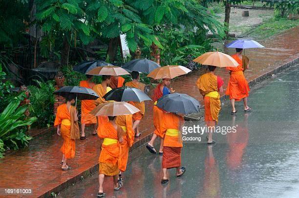 Monks in the rain in Luang Prabang