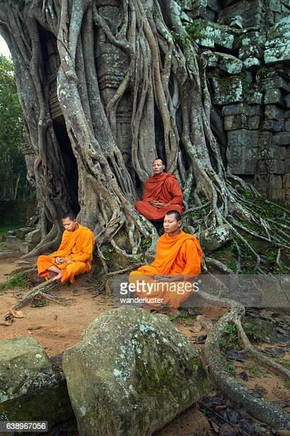 Monks meditating among tangled roots