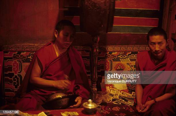Monks of Meru Sarpa monastery Tibet in Lhasa China