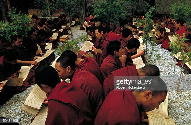 Monks poring over scriptures, chanting, at Sera Monastery.
