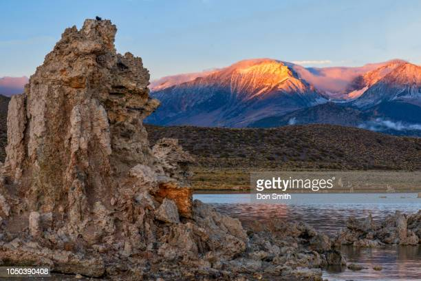 mono lake tufa and alpenglow on eastern sierra - don smith foto e immagini stock