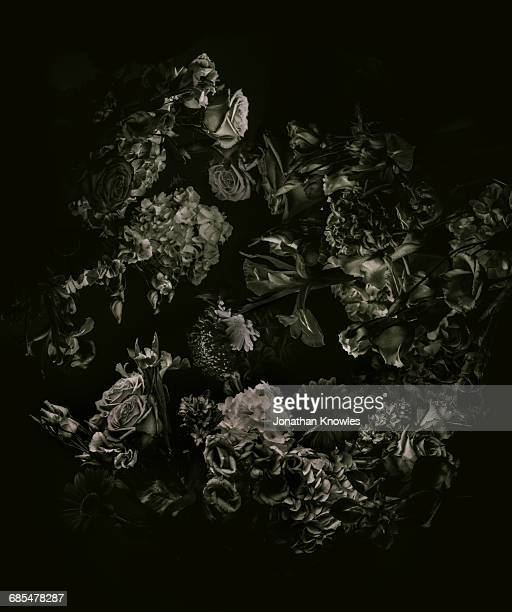 monochrome flower arrangement, shot from above - bizarre stock pictures, royalty-free photos & images