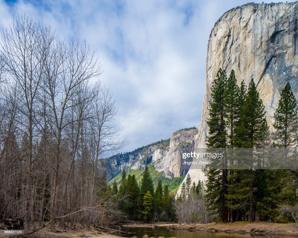monolith of el capitan and forest stock photo | getty images