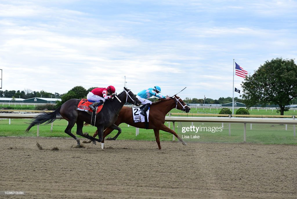 The Elkstone Group's Monomoy Girl At $1 Million Cotillion Stakes  At Parx Racing
